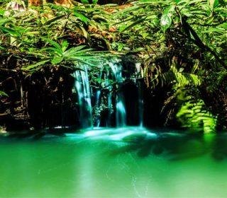 Panorama of waterfall in garden design.