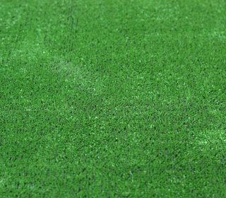 green lawn texture