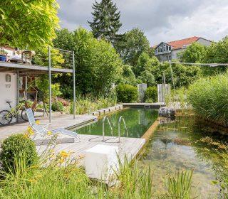 Schwimmteich im Garten eingebettet