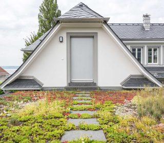 Extensive Dachbegrünung mit Weg