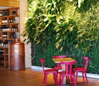 Grüne Wand in Weinhandlung