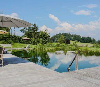 Schwimmteich mit großer Holzterrasse