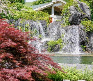 Schwimmteich mit Wasserfall