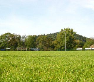 Grüne Sportanlage