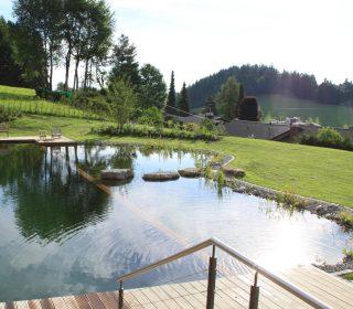 Schwimmteich in idyllischer Lage