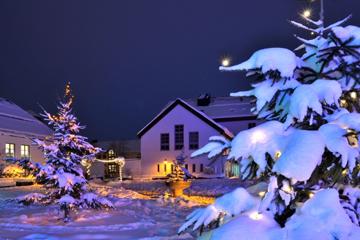 weihnachten-haas