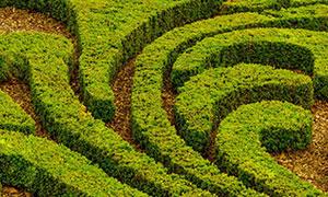 landschaftsbau-nx