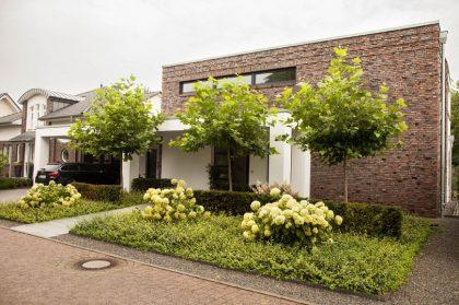 Bäume für kleine Vorgärten