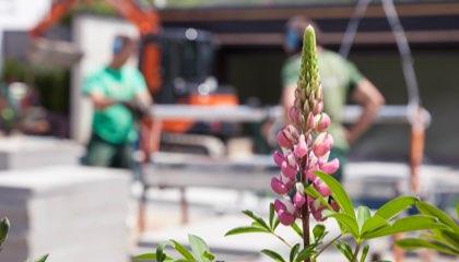 Facharbeiter Gartengestaltung (m/w/d)
