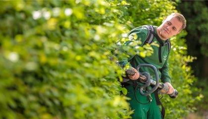 Facharbeiter Gartenpflege (m/w/d)