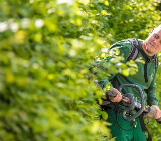 Facharbeiter Gartenpflege